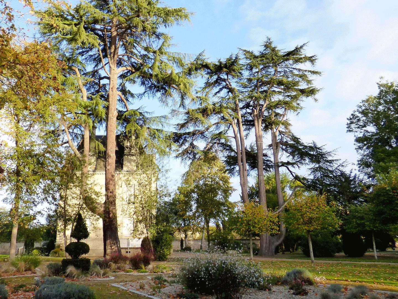 Parc de la Mairie des Ormes