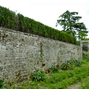 Presbytère - Jardin-en-terrasse