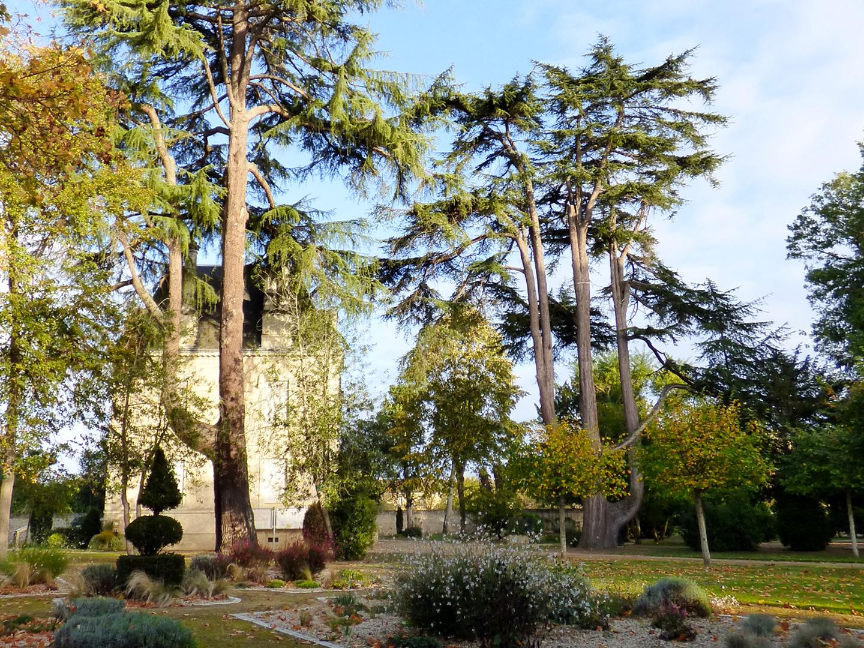 parc-mairie Les Ormes